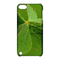 Drops Apple Ipod Touch 5 Hardshell Case With Stand by Siebenhuehner