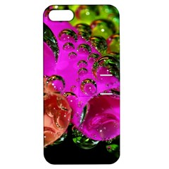 Tubules Apple Iphone 5 Hardshell Case With Stand by Siebenhuehner