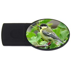 Songbird 2gb Usb Flash Drive (oval)