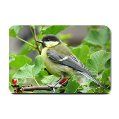 Songbird Small Door Mat