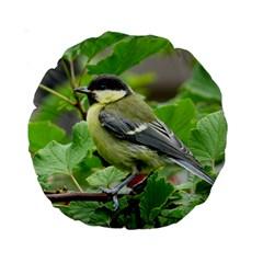 Songbird 15  Premium Round Cushion