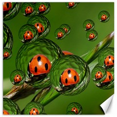 Ladybird Canvas 20  X 20  (unframed) by Siebenhuehner
