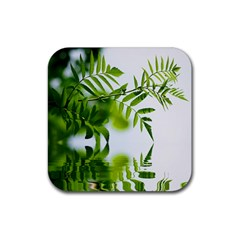 Leafs With Waterreflection Drink Coaster (square)