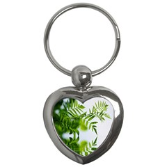 Leafs With Waterreflection Key Chain (heart) by Siebenhuehner