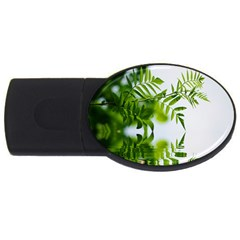 Leafs With Waterreflection 4gb Usb Flash Drive (oval) by Siebenhuehner
