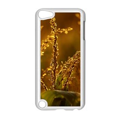 Field Apple Ipod Touch 5 Case (white)