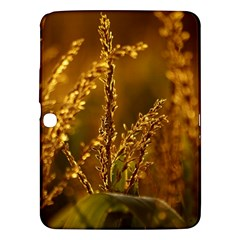 Field Samsung Galaxy Tab 3 (10 1 ) P5200 Hardshell Case  by Siebenhuehner