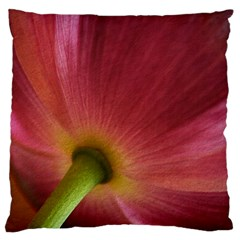 Poppy Large Cushion Case (two Sided)  by Siebenhuehner