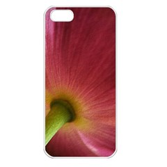 Poppy Apple Iphone 5 Seamless Case (white) by Siebenhuehner