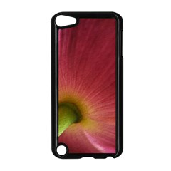 Poppy Apple Ipod Touch 5 Case (black) by Siebenhuehner