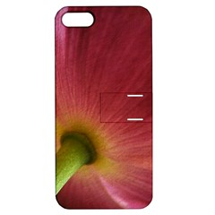 Poppy Apple Iphone 5 Hardshell Case With Stand by Siebenhuehner