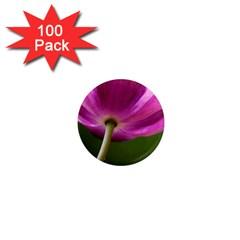 Poppy 1  Mini Button Magnet (100 Pack) by Siebenhuehner