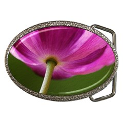 Poppy Belt Buckle (oval) by Siebenhuehner