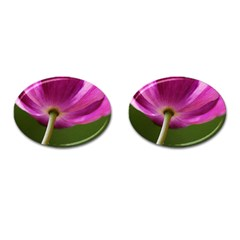 Poppy Cufflinks (oval) by Siebenhuehner