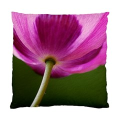Poppy Cushion Case (single Sided)  by Siebenhuehner