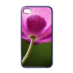 Poppy Apple Iphone 4 Case (black) by Siebenhuehner