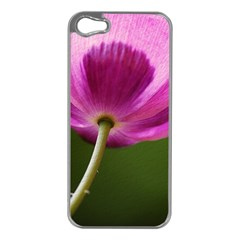 Poppy Apple Iphone 5 Case (silver) by Siebenhuehner