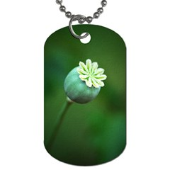 Poppy Capsules Dog Tag (one Sided)