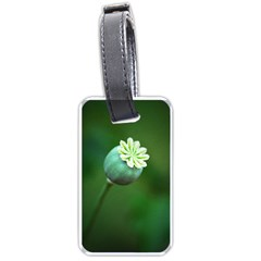 Poppy Capsules Luggage Tag (one Side) by Siebenhuehner