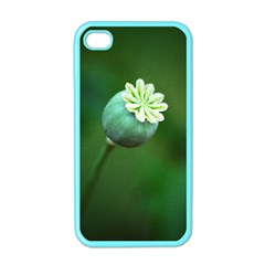 Poppy Capsules Apple Iphone 4 Case (color) by Siebenhuehner