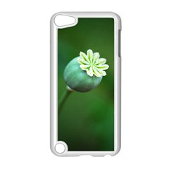 Poppy Capsules Apple Ipod Touch 5 Case (white) by Siebenhuehner