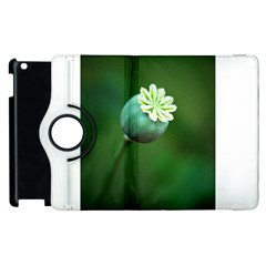 Poppy Capsules Apple Ipad 2 Flip 360 Case by Siebenhuehner