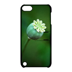 Poppy Capsules Apple Ipod Touch 5 Hardshell Case With Stand by Siebenhuehner