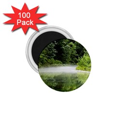 Foog 1 75  Button Magnet (100 Pack) by Siebenhuehner