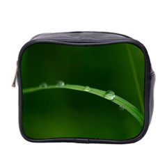 Pearls   Mini Travel Toiletry Bag (two Sides) by Siebenhuehner