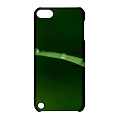 Pearls   Apple iPod Touch 5 Hardshell Case with Stand by Siebenhuehner