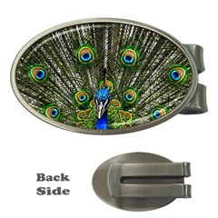 Peacock Money Clip (oval) by Siebenhuehner