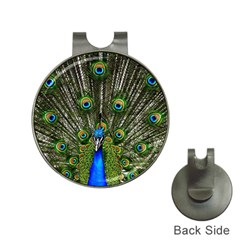 Peacock Hat Clip With Golf Ball Marker by Siebenhuehner