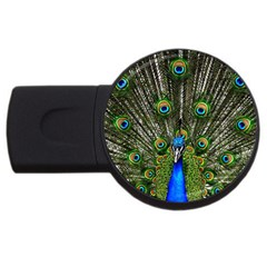 Peacock 4gb Usb Flash Drive (round)