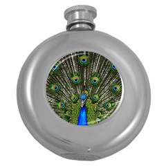 Peacock Hip Flask (round) by Siebenhuehner