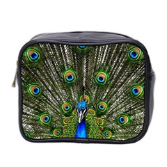 Peacock Mini Travel Toiletry Bag (two Sides) by Siebenhuehner