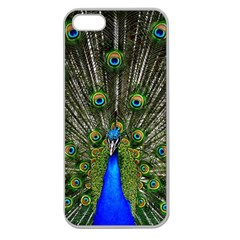 Peacock Apple Seamless Iphone 5 Case (clear) by Siebenhuehner