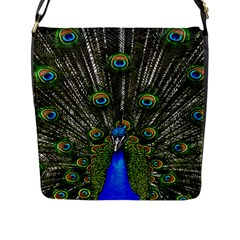 Peacock Flap Closure Messenger Bag (large) by Siebenhuehner