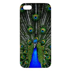 Peacock Iphone 5s Premium Hardshell Case by Siebenhuehner