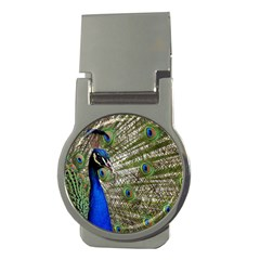 Peacock Money Clip (round)