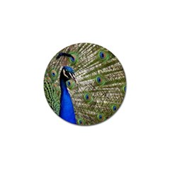 Peacock Golf Ball Marker 4 Pack by Siebenhuehner