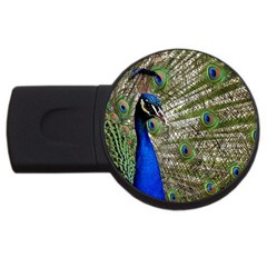 Peacock 4gb Usb Flash Drive (round) by Siebenhuehner
