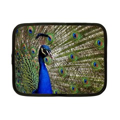 Peacock Netbook Case (small) by Siebenhuehner
