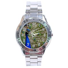 Peacock Stainless Steel Watch (men s) by Siebenhuehner