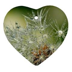 Dandelion Heart Ornament by Siebenhuehner