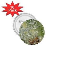 Dandelion 1 75  Button (10 Pack) by Siebenhuehner