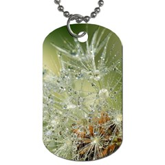 Dandelion Dog Tag (two Sided)  by Siebenhuehner
