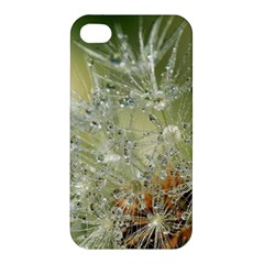 Dandelion Apple Iphone 4/4s Premium Hardshell Case by Siebenhuehner