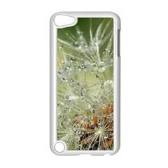 Dandelion Apple Ipod Touch 5 Case (white) by Siebenhuehner