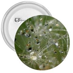 Dandelion 3  Button by Siebenhuehner