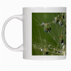 Dandelion White Coffee Mug by Siebenhuehner